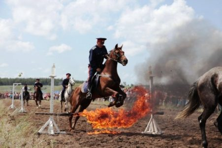 koni2